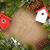 Christmas decor and snow fir tree stock photo © karandaev