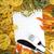 спагетти · белый · бумаги · фон · пшеницы - Сток-фото © karandaev