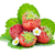 four strawberry fruits with green leaves and flowers stock photo © karandaev