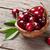 ripe cherry stock photo © karandaev