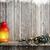 Рождества · свечу · фонарь · фары · стены - Сток-фото © karandaev