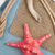 seashells ship rope and burlap stock photo © karandaev