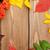 jagody · pozostawia · czerwony · świeże · zielone · liście · Błękitne · niebo - zdjęcia stock © karandaev