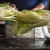 中国語 · 箸 · サラダ · 水平な · 背景 · 表 - ストックフォト © karpenkovdenis