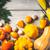 blanco · mesa · vajilla · hortalizas · superior · vista - foto stock © karpenkovdenis