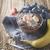 puding · banán · csokoládé · étel · fa · desszert - stock fotó © karpenkovdenis