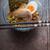 zuppa · ramen · pollo · ala · uovo - foto d'archivio © Karpenkovdenis