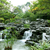 chinese garden stock photo © kawing921