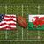USA · vs · Wales · zászlók · rögbi · mező - stock fotó © kb-photodesign