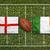 Anglia · vs · zászlók · rögbi · mező · zöld - stock fotó © kb-photodesign