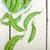 新鮮 · 綠色 · 豌豆 · 鄉村 · 質地 - 商業照片 © keko64