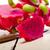 frescos · dragón · frutas · tailandés · púrpura · blanco - foto stock © keko64