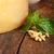 ペスト · 材料 · ソース · 松 · ナッツ · バジル - ストックフォト © keko64
