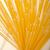 spaghetti · isolato · bianco · sfondo · pasta - foto d'archivio © keko64