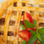 говядины · пирог · свежие · макроса - Сток-фото © keko64