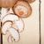 fresco · cogumelo · branco · natureza · grupo · chinês - foto stock © keko64