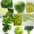 saúde · comida · beber · coleção · bebidas · raiz - foto stock © keko64