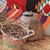 fruto · imprensa · negócio · madeira · natureza · saúde - foto stock © kentoh