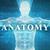 digitális · anatómia · technológia · absztrakt · test · gyógyszer - stock fotó © kentoh