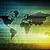 netwerk · draadloze · snel · telecommunicatie · wifi · cellulaire - stockfoto © kentoh
