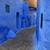 kék · város · népszerű · úticél · macska · otthon - stock fotó © kentoh