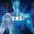 cms · technologie · grafiek · grafiek · 3D · Blauw - stockfoto © kentoh