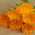 boeket · houten · tafel · bloem · voorjaar · natuur · zomer - stockfoto © Kidza