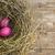 Paskalya · yuva · pembe · paskalya · yumurtası · çiçekler · mutlu - stok fotoğraf © kidza