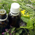 Essential oils and medical  herbs stock photo © Kidza