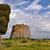 torony · Olaszország · romok · óriás · virág · épület - stock fotó © kikkerdirk
