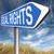 egyenlő · jogok · üzenet · zöld · tábla · fakeret - stock fotó © kikkerdirk