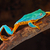 kikker · klimmen · bamboe · boomkikker · geïsoleerd - stockfoto © kikkerdirk