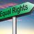 egyenlő · jogok · piros · pecsét · fehér · erő - stock fotó © kikkerdirk