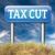 taglio · fiscali · immagine · reso · usato - foto d'archivio © kikkerdirk