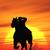 kovboy · görüntü · gün · batımı · gökyüzü · çim · doğa - stok fotoğraf © Kirschner