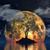 3D · maan · planeet · boom · silhouet · 3d · render - stockfoto © kjpargeter