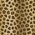 leopardo · big · cat · preto - foto stock © kjpargeter