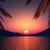 ハンモック · ヤシの木 · 日没 · 実例 · シルエット · 休暇 - ストックフォト © kjpargeter