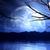 boom · silhouet · berg · hemel · natuur · bomen - stockfoto © kjpargeter