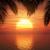 zonsondergang · zonsopgang · palmboom · mooie · eiland · palmbomen - stockfoto © kjpargeter
