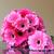 knoopsgat · bloemen · bloem · bruidegom · huwelijk · jurk - stockfoto © kmwphotography