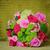 menyasszonyok · vörös · rózsák · menyasszony · tart · virágcsokor · lenyűgöző - stock fotó © kmwphotography
