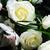 menyasszonyok · virágcsokor · közelkép · rózsaszín · rózsák · virágok - stock fotó © kmwphotography