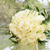 spose · bouquet · sposa · bianco · verde · blu - foto d'archivio © kmwphotography