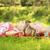 mamá · pequeño · hija · mentir · hierba · cielo - foto stock © koca777