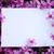 lila · flores · vacío · tarjeta · edad - foto stock © koca777