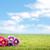 bloemen · weide · bloem · textuur · abstract · natuur - stockfoto © konradbak