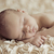 cute sleeping newborn baby on petals stock photo © konradbak