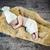 aranyos · kicsi · gyermek · puha · pléd · fehér - stock fotó © konradbak