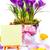 páscoa · cartão · ovos · flores · da · primavera · ovos · de · páscoa - foto stock © Konstanttin